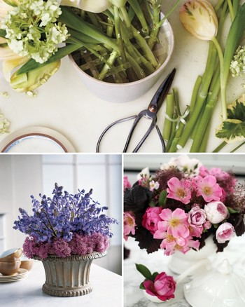 Purple Pairings: Spanish Bluebells and Blossoming Chive
