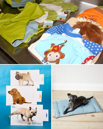 Organizing for Your Pet Creates Harmony in the Home