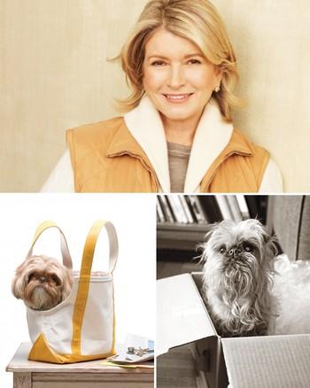 Canvas Tote Doggie Bag