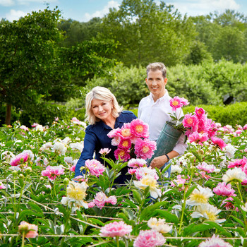 cut above martha stewart kevin sharkey in flower field