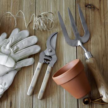 gardening tools and essentials