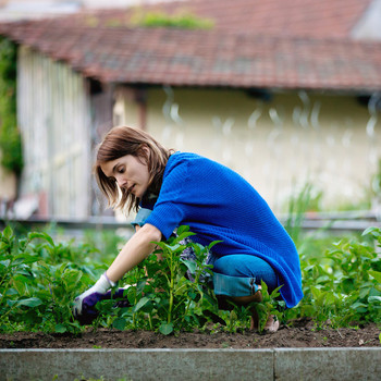 woman weeding in garden