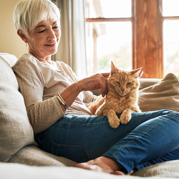 woman sitting on a couch and petting a cat