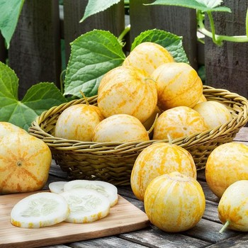 lemon cucumbers on wooden table and sliced on wooden cutting board