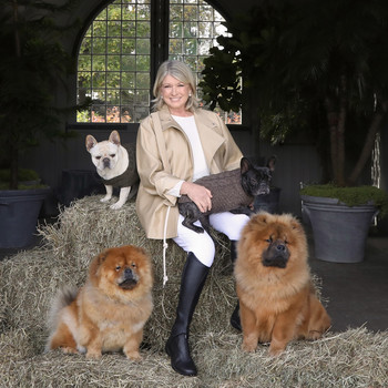 martha stewart with her dogs