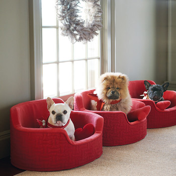 Martha's dogs on red chairs near window with wreath