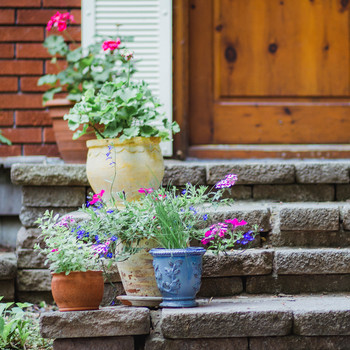 Potted Flower Arrangements, Outdoor Planters with Flowers
