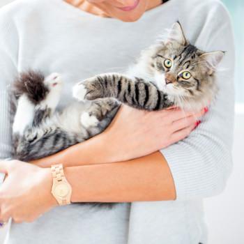 woman cuddling siberian cat
