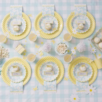 celebrations crafts lemon meyer party supplies