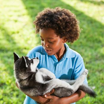 little boy holding husky puppy
