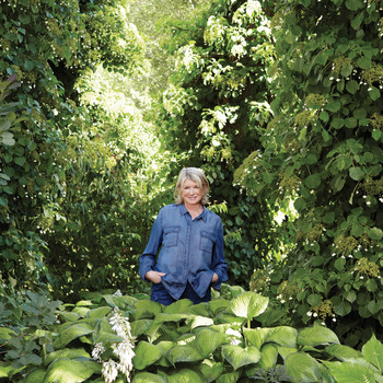 Here's What's Happening in Martha's Garden This Fall