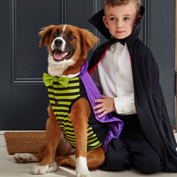 Matching Owner and Dog Costumes for a Pet-rifyingly Cute Halloween