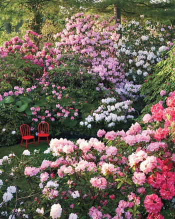 Charmant Flower Gardens