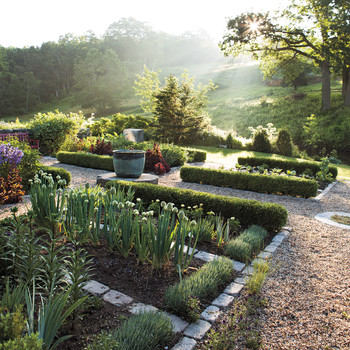 10 Gardening Mistakes to Stop Making Now