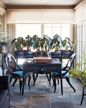 black wicker furniture and plants