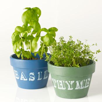 Herb Chalkboard Pots