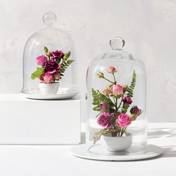 Valentine's Day Garden Cloches
