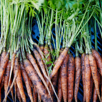 Seasonal Produce Guide: What to Buy in March