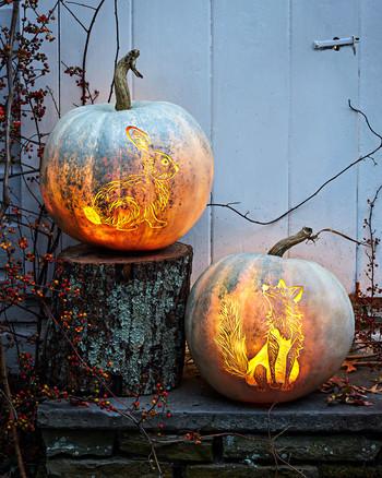 6942cbb38ab9 etched woodland animal pumpkins fox rabbit halloween decorations