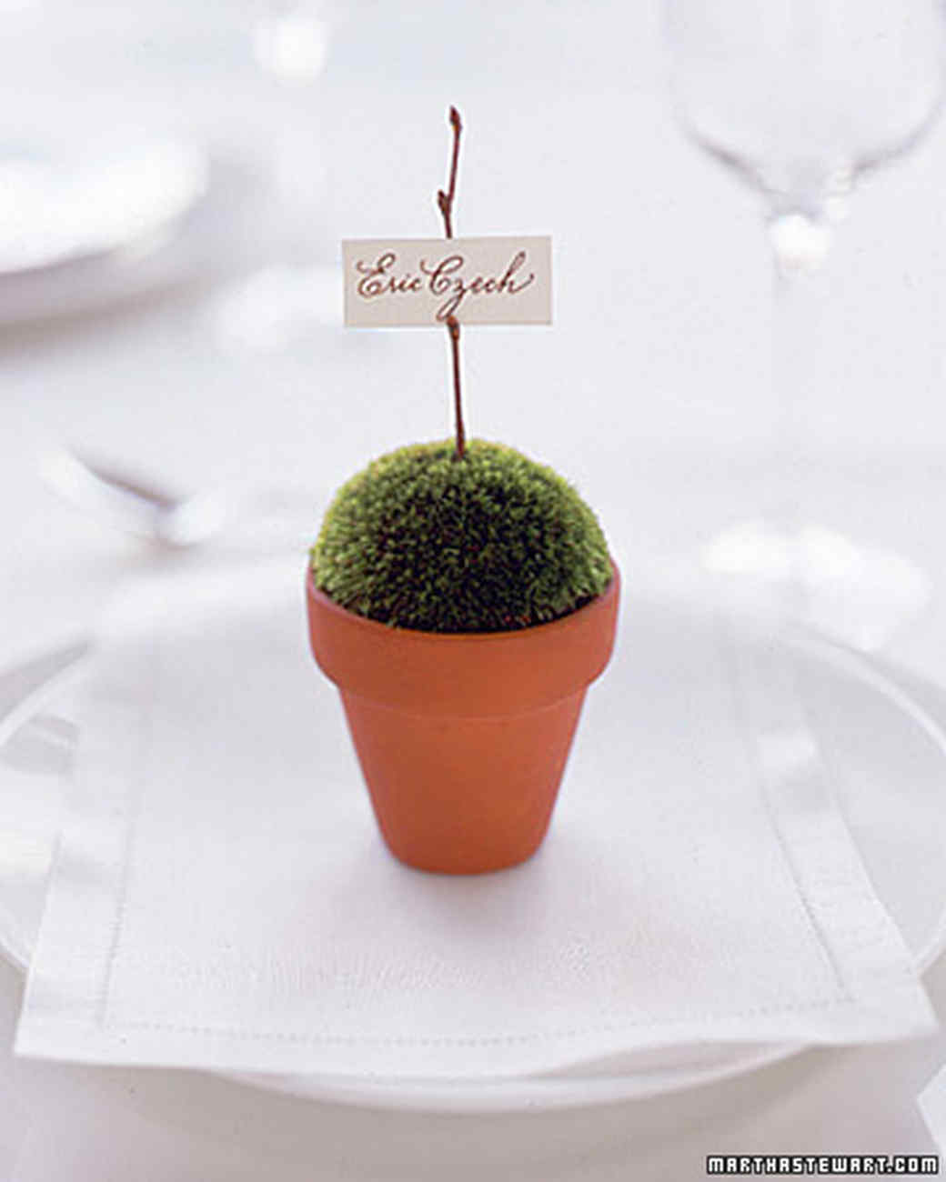 Potted Place Card