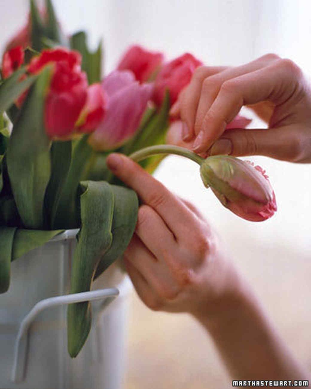 ft_flowers16.jpg