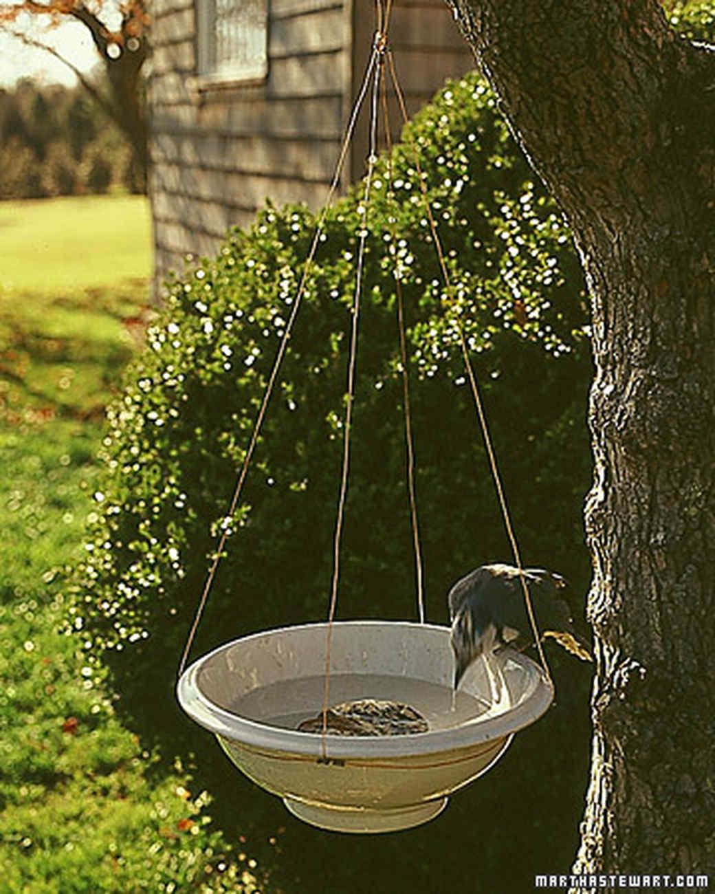 0400_birdbath.jpg