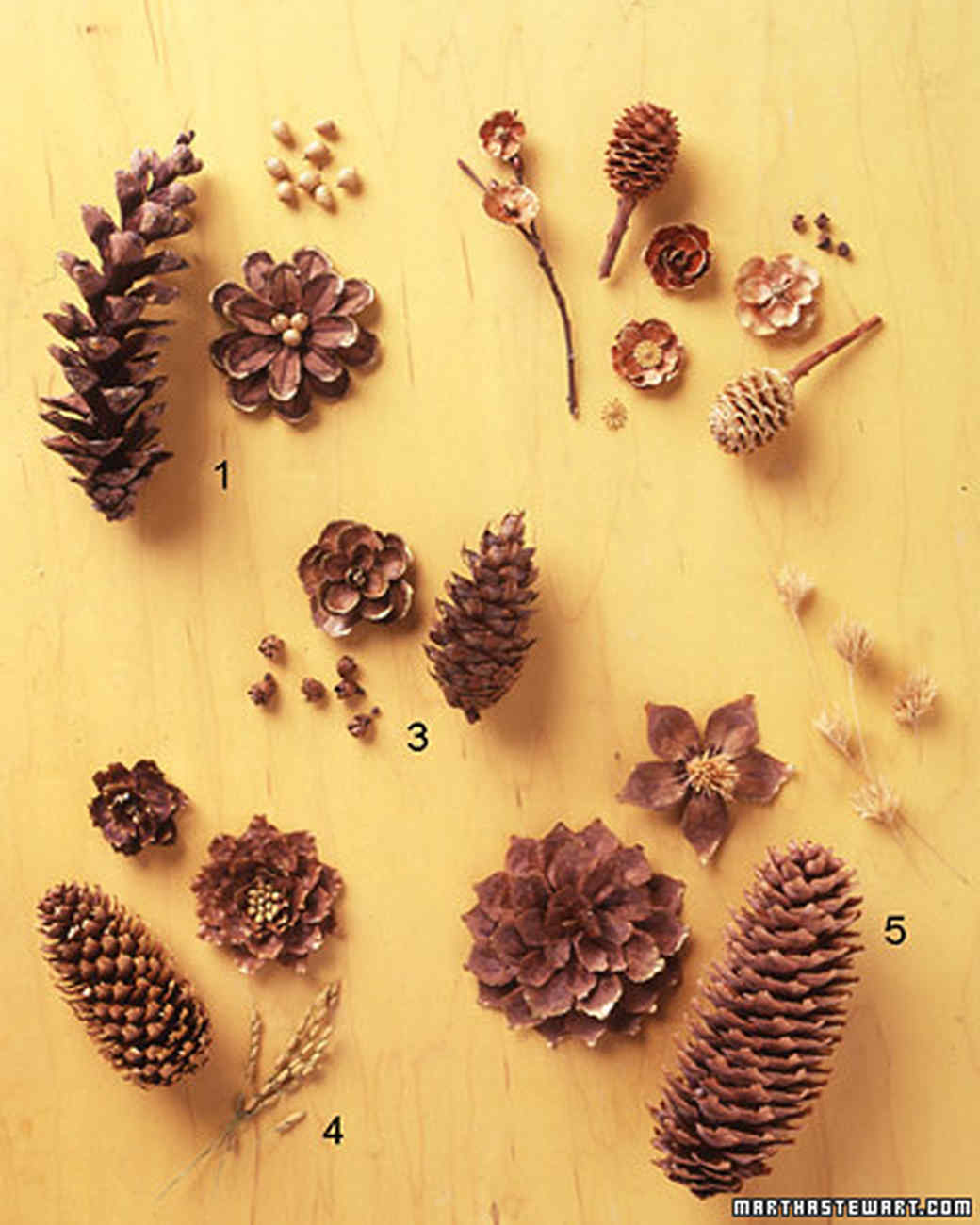 Pinecone crafts martha stewart for Pine cone art projects