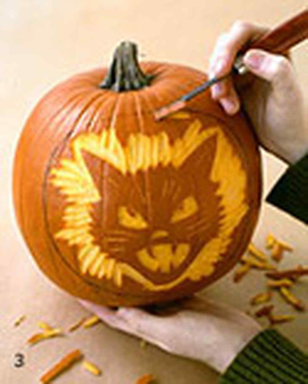 spooky pumpkins and pumpkin prints martha stewart