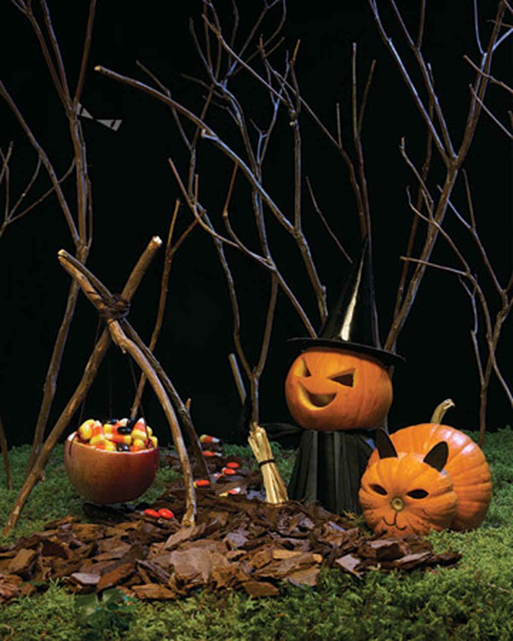 Mini Witch and Cat Pumpkins