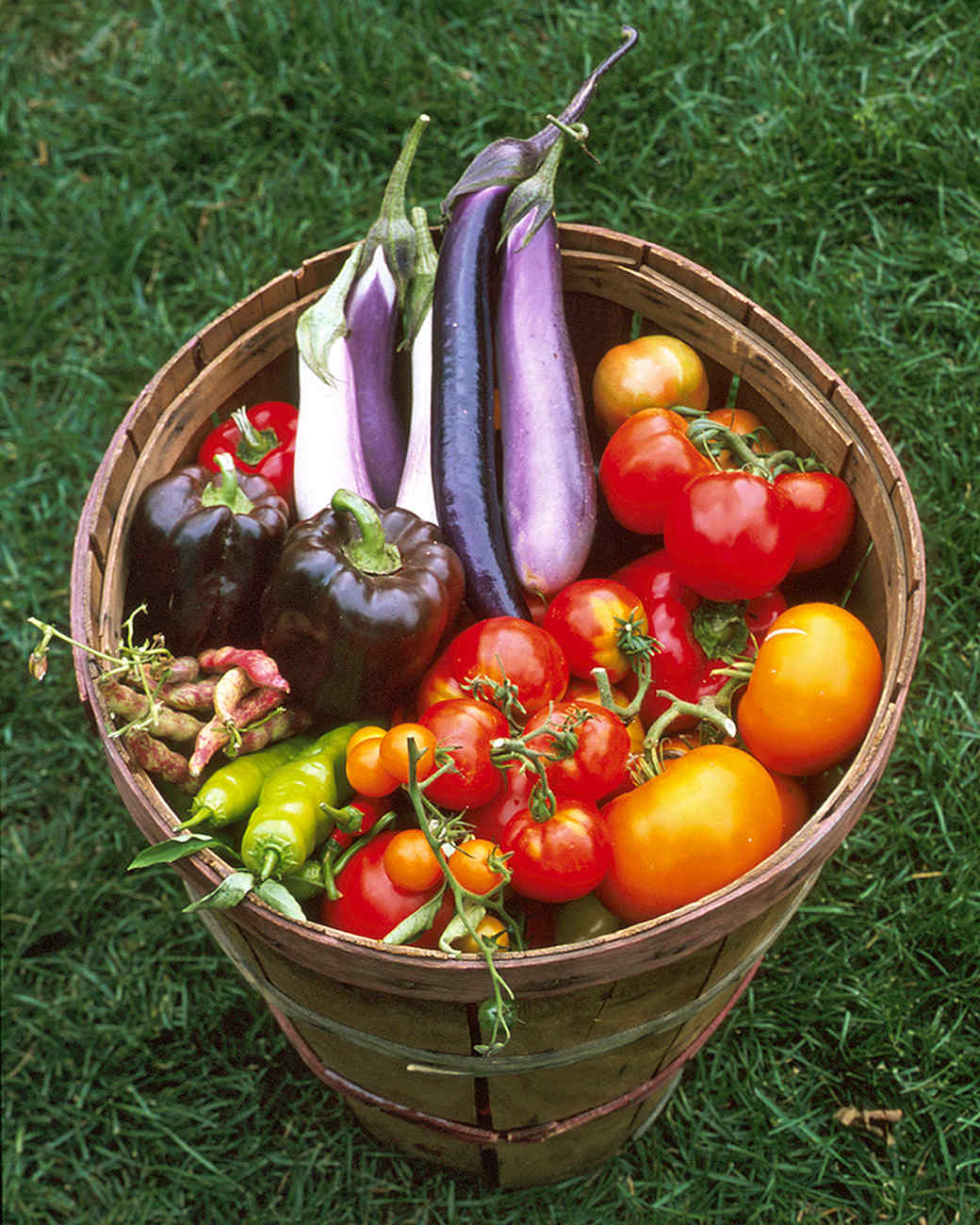 Fruit And Vegetable Garden Ideas Part - 48: Martha Stewart