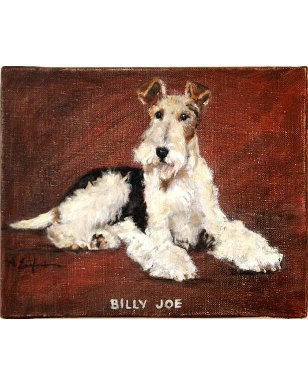 pets_billy_joe.jpg