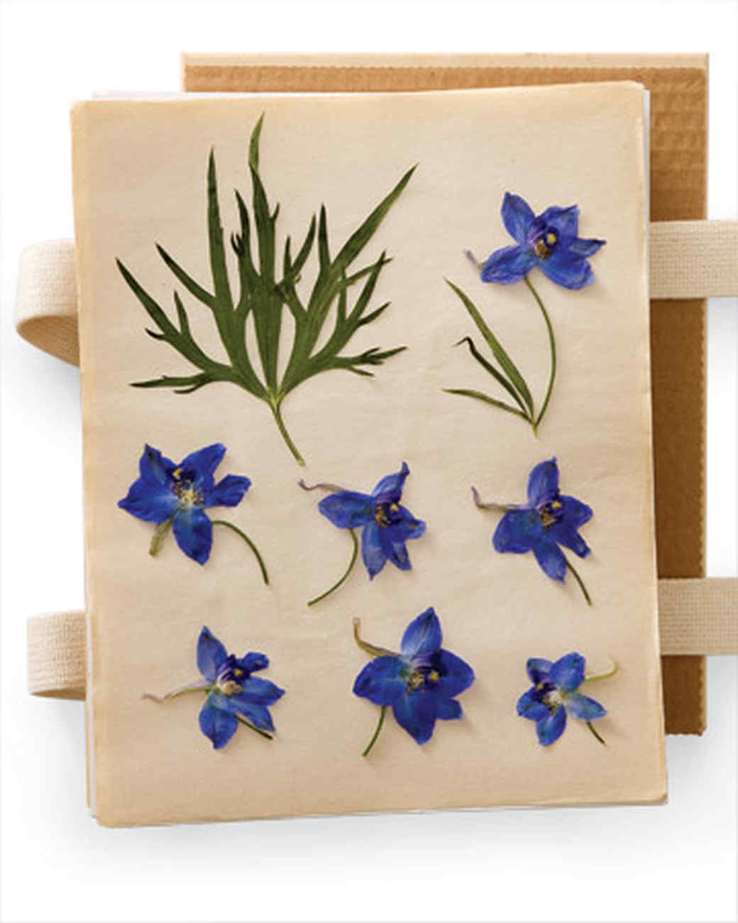 Floral inspired crafts martha stewart for Dried flowers for crafts
