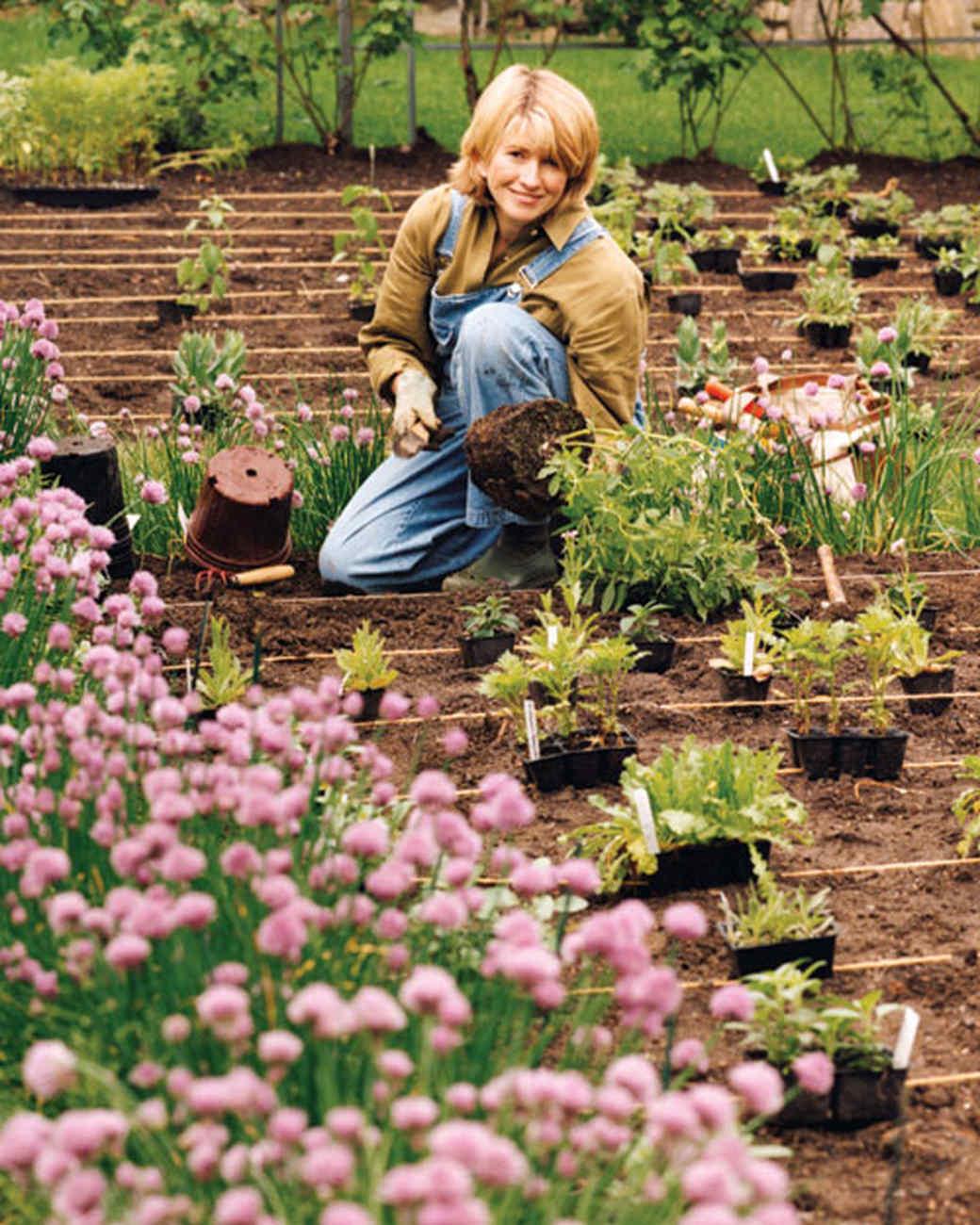 la_1007_planting.jpg