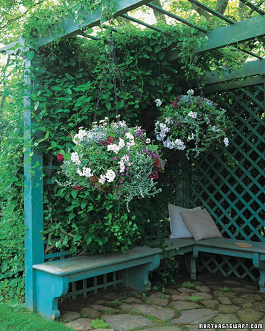 Container Garden Ideas: Container Garden Ideas For Any Household