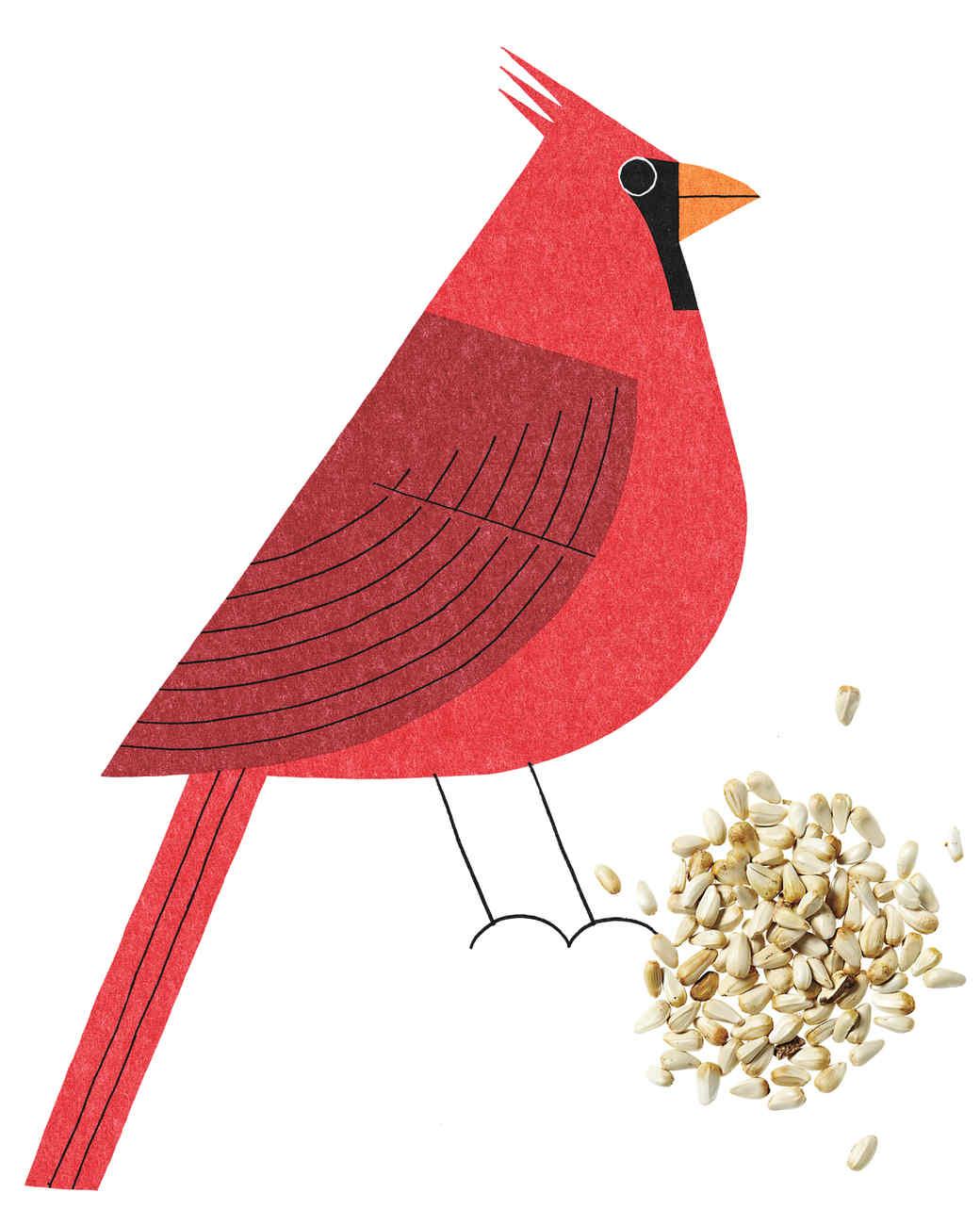 cardinal-mi110385.jpg