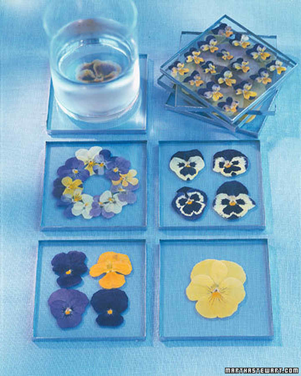 Pressed-Pansy Coasters