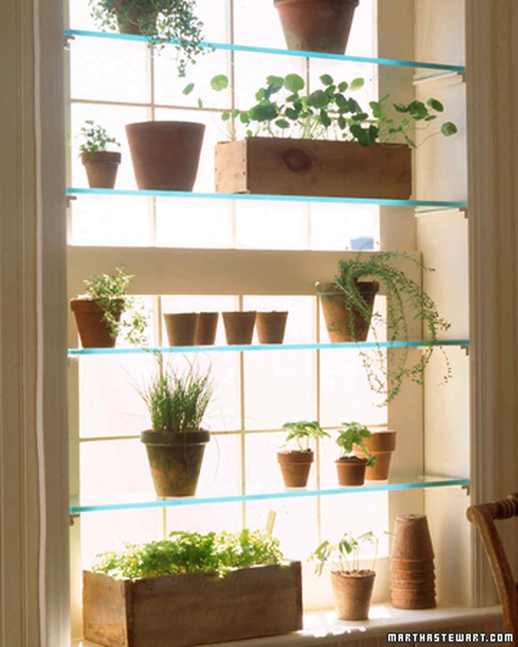 Charming Greenhouse Window