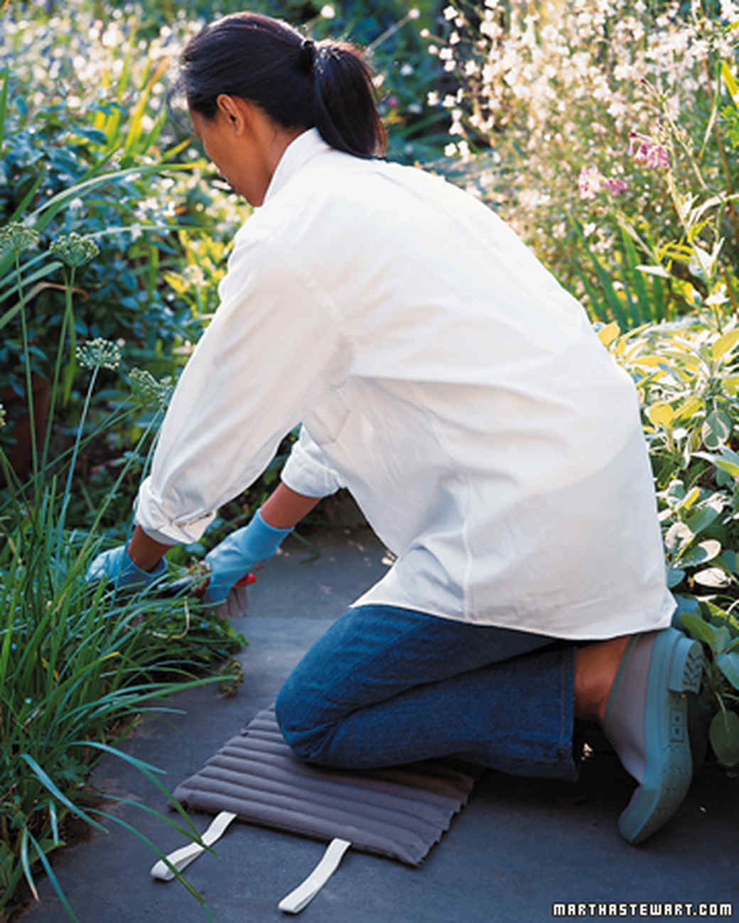 vegetable garden care martha stewart
