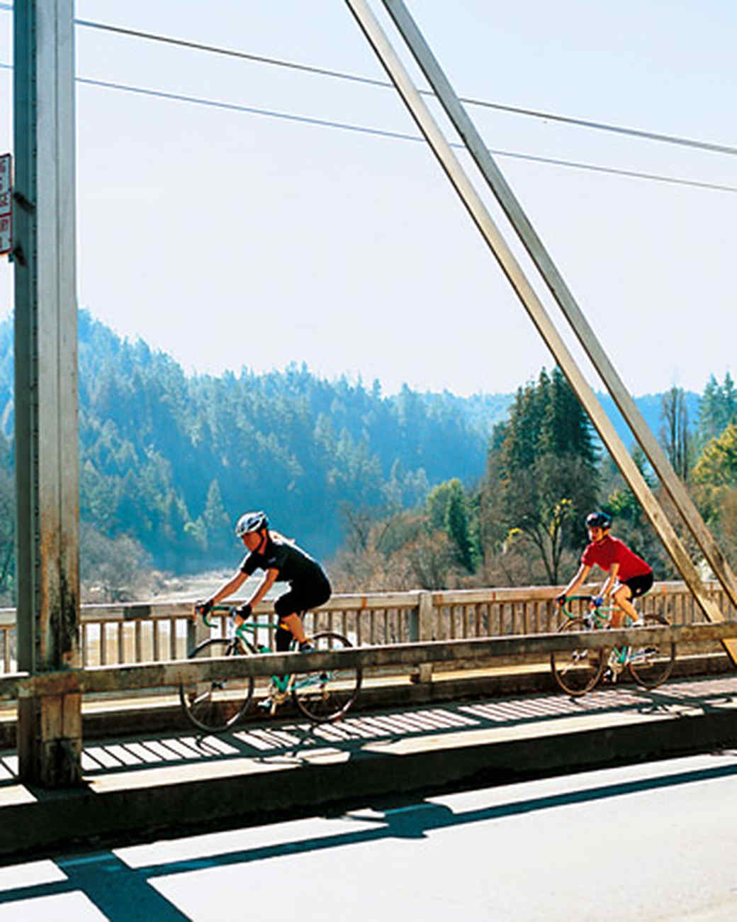ml305_0503_bridge.jpg