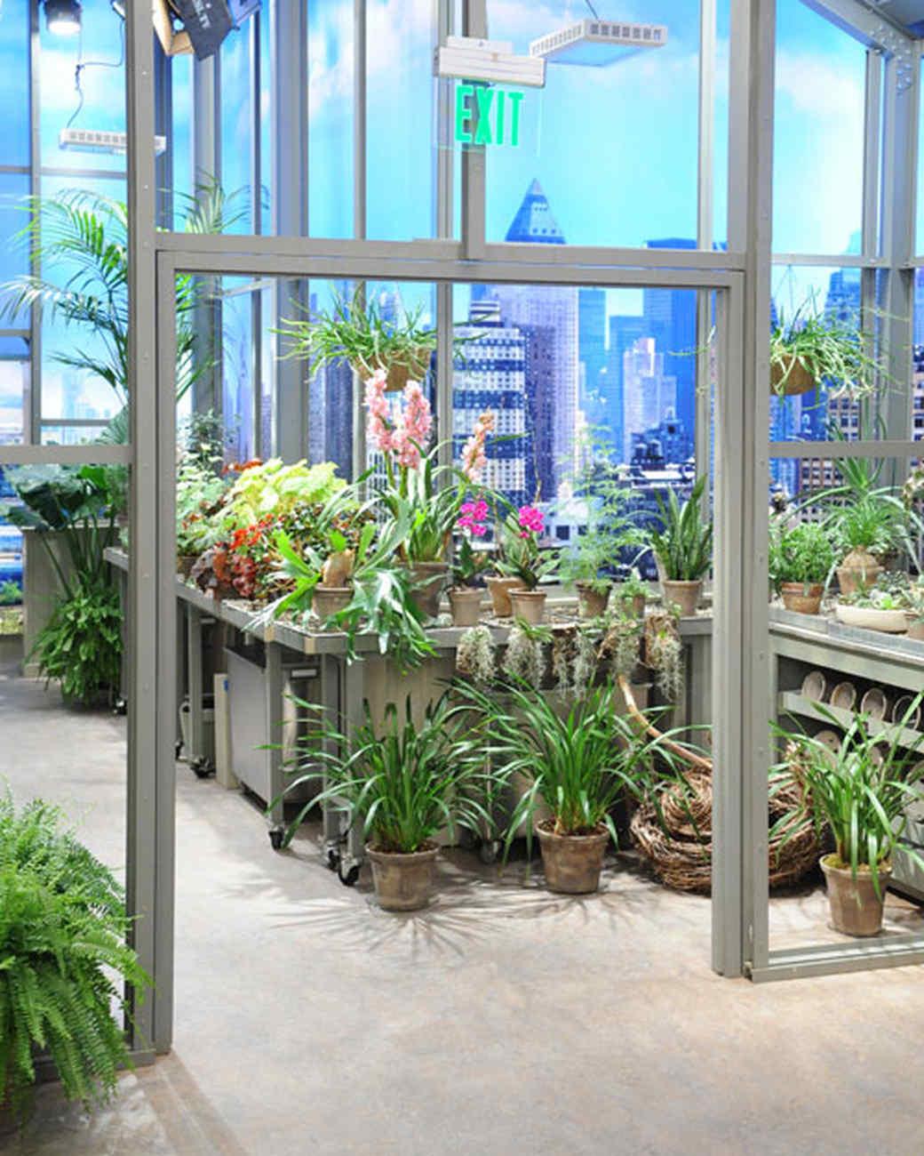msshow_greenhouse.jpg