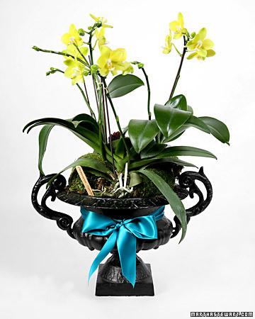 2065_craft_flowers.jpg