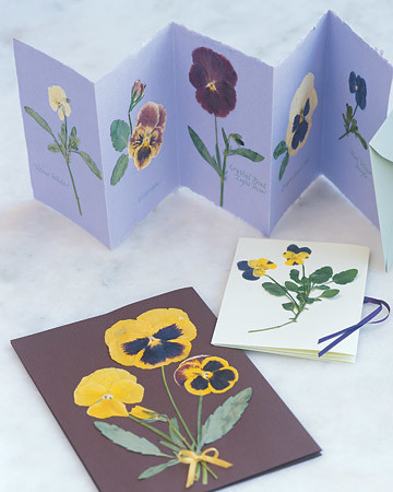 Pressed Pansy Cards