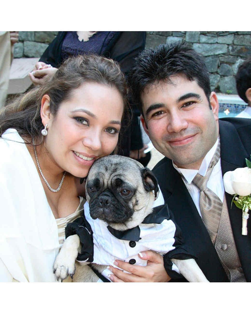 pets_wedding_90786.jpg