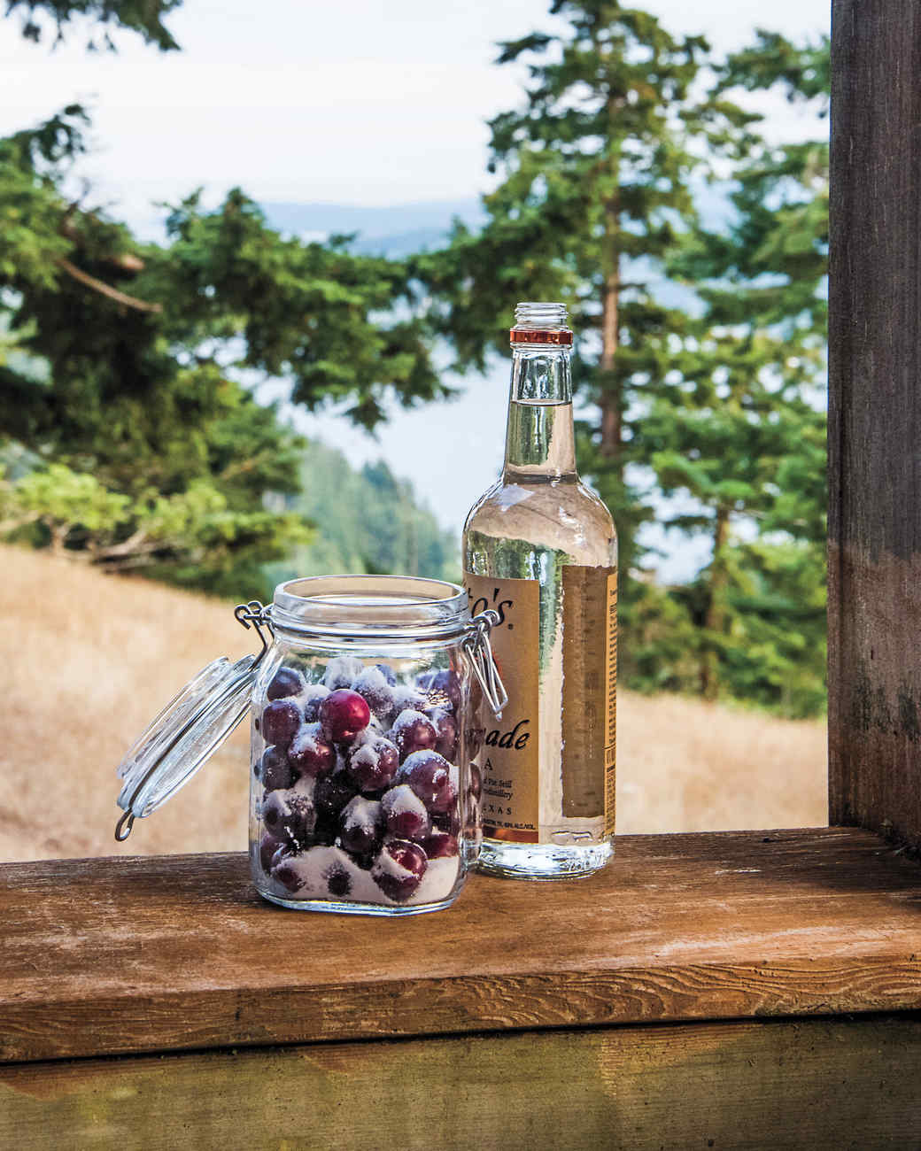 plum-vodka-d111488.jpg