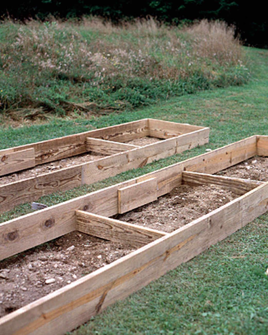 raised-beds-4-1215.jpg
