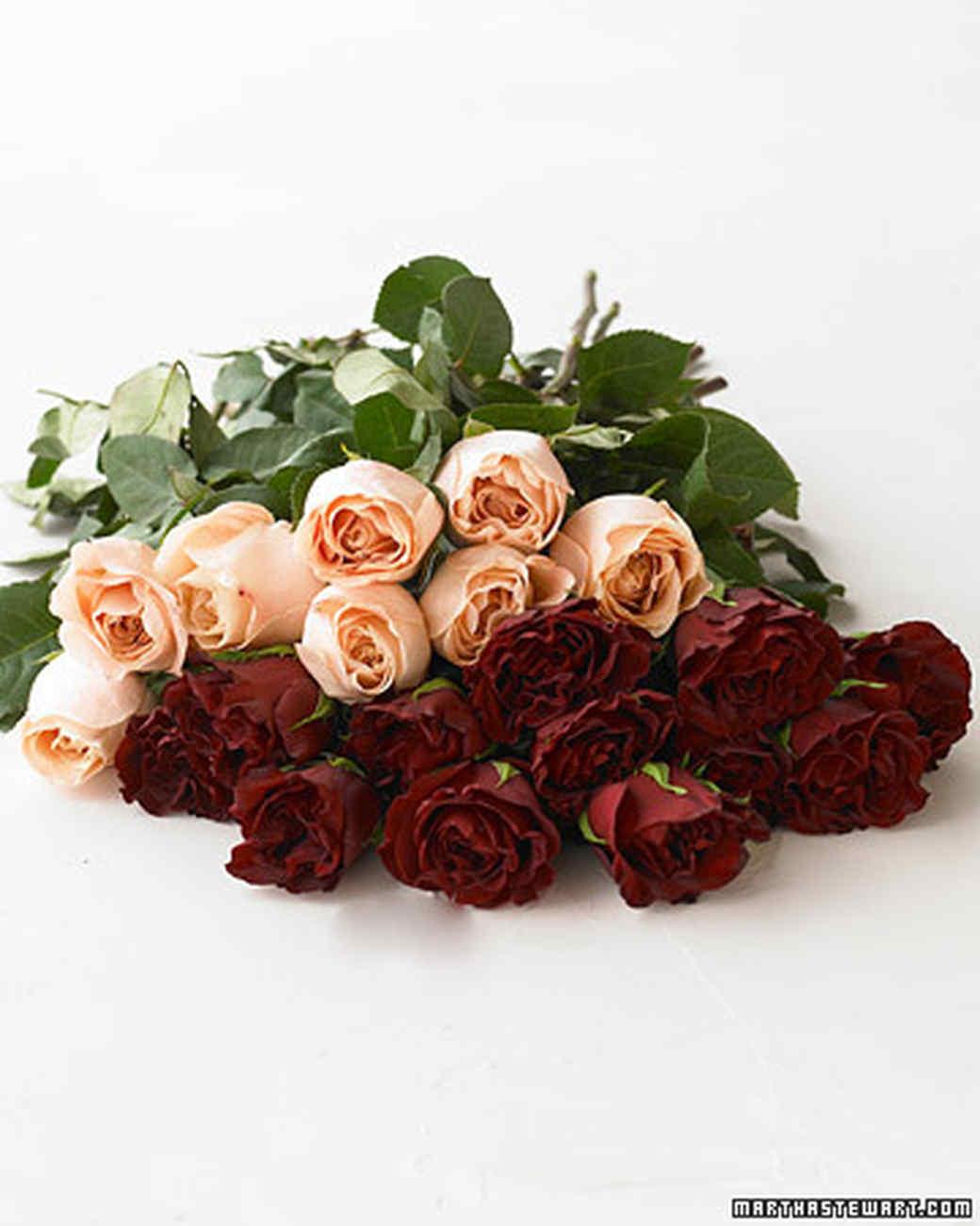 bd103521_0108_roses.jpg