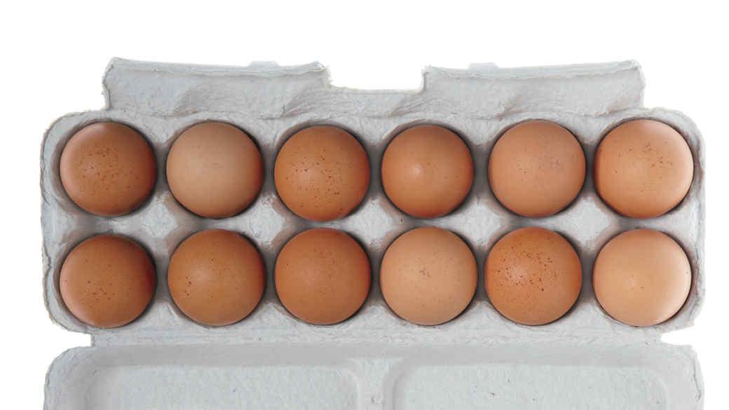 egg-carton-001-0814.jpg