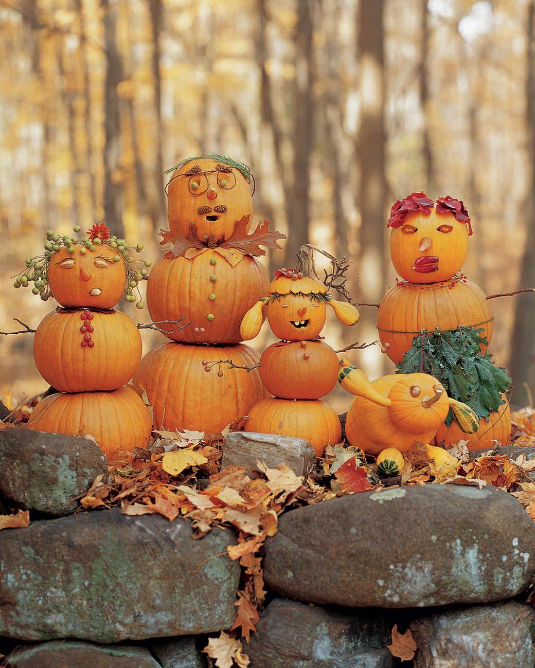 Gourd Family