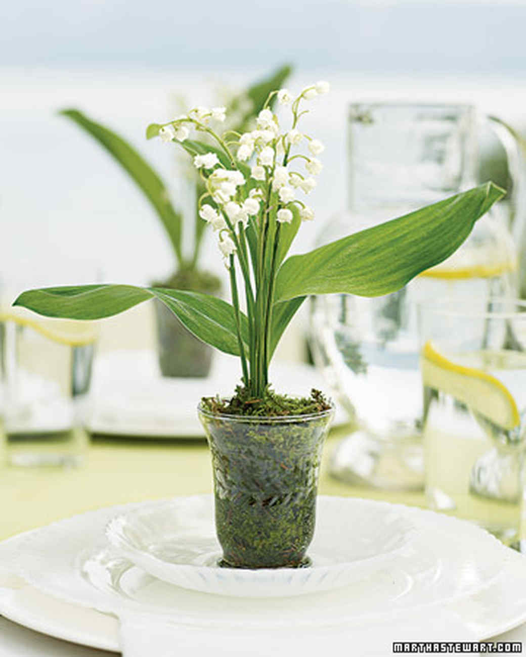 Lily Place Setting