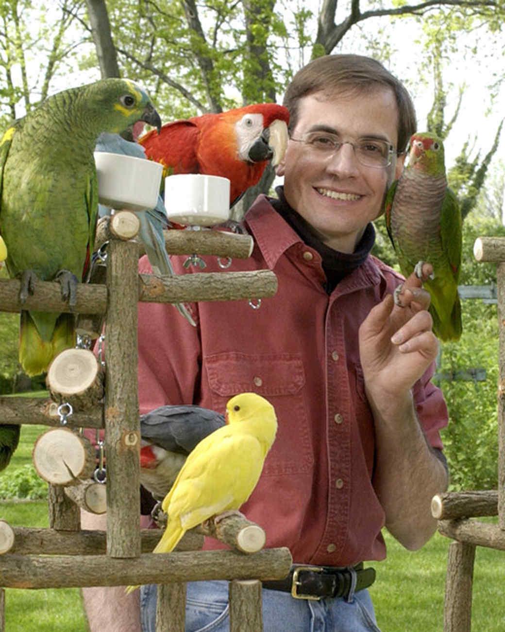 pe_birds_tvs7088_07.jpg